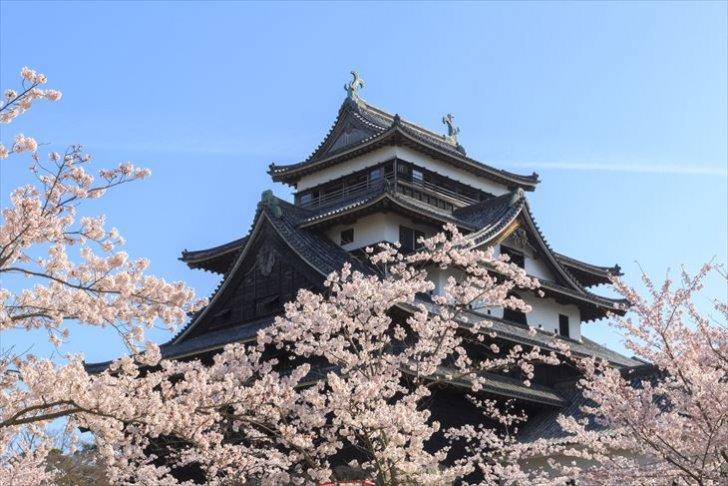 pixta 21701724 M 1 R 728x486 - 玉造温泉の観光スポット10選|国宝・松江城や縁結びの神社に注目!