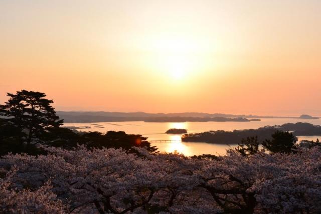 8823edf482d73983edcb8c0feb57840a s - 松島周辺のおすすめグルメランチランキングTOP5!ご当地名物は?【最新版】