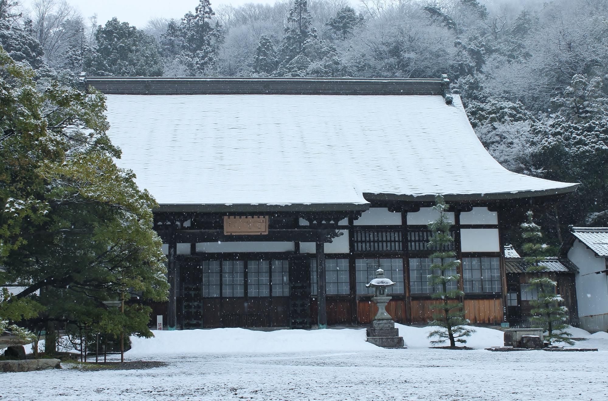 滋賀県 彦根市 清涼寺