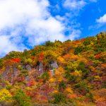 pixta 24344014 S 150x150 - 栃木県 那須高原のおすすめ観光スポットランキング10選