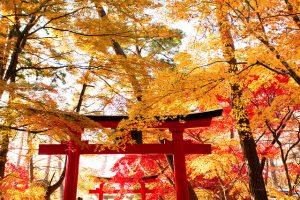 花巻温泉 神社