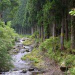 洞川温泉 自然