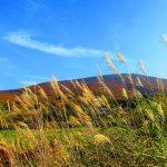 fall of japan 1758561 1280 150x150 - 青森で観光に人気のおすすめスポットランキングTOP10!お土産や名物についても【2018年最新版】