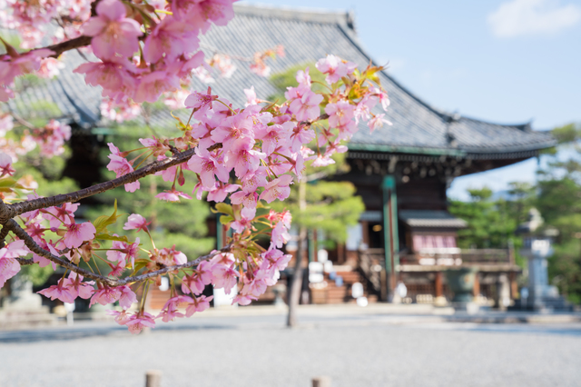 清凉寺 京都府 嵐山