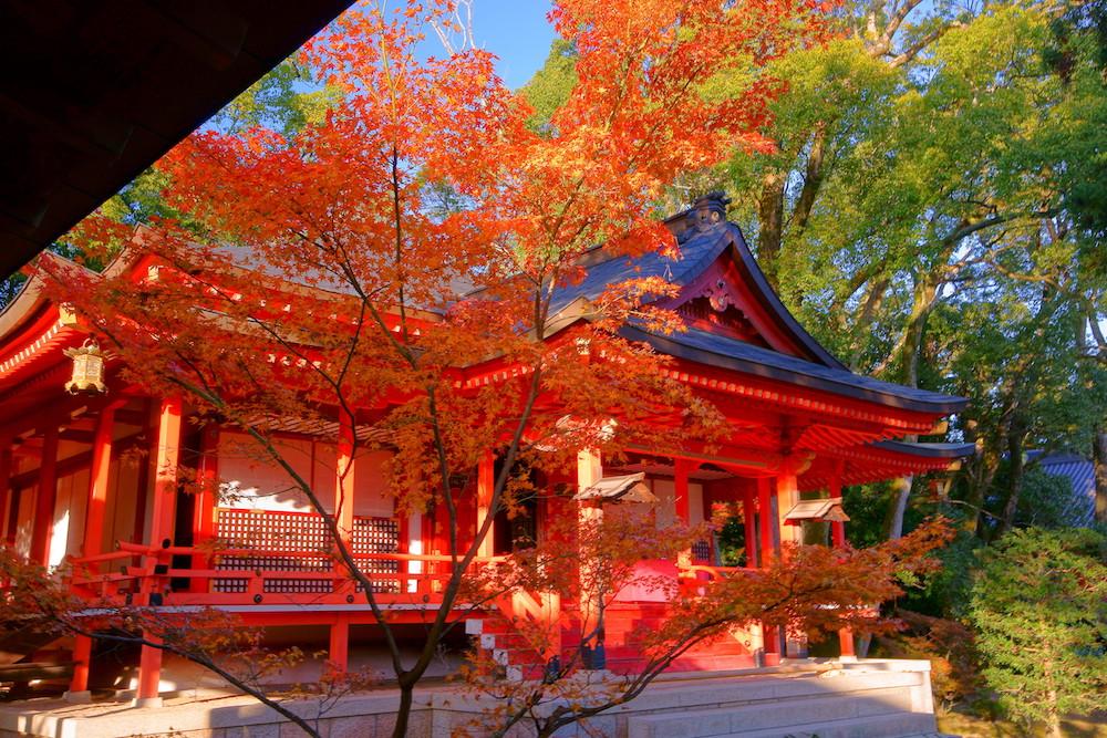 大覚寺 京都 嵐山