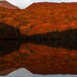 tsutanuma 1206685 1280 150x150 - 大鰐温泉が人気の3つの理由!旅館や観光情報から名物グルメ&お土産についても
