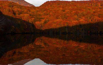 tsutanuma 1206685 1280 360x230 - 青森で観光に人気のおすすめスポットランキングTOP10!お土産や名物についても【2018年最新版】
