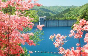pixta 22321790 S 360x230 - 四万温泉のおすすめ人気旅館・ホテル&観光スポットとグルメ情報やお土産も