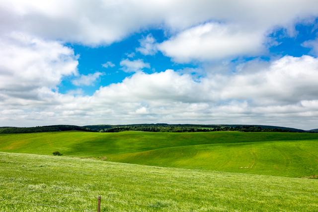 北海道 豊富温泉 大規模草地牧場