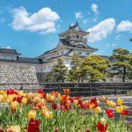 富山 富山城