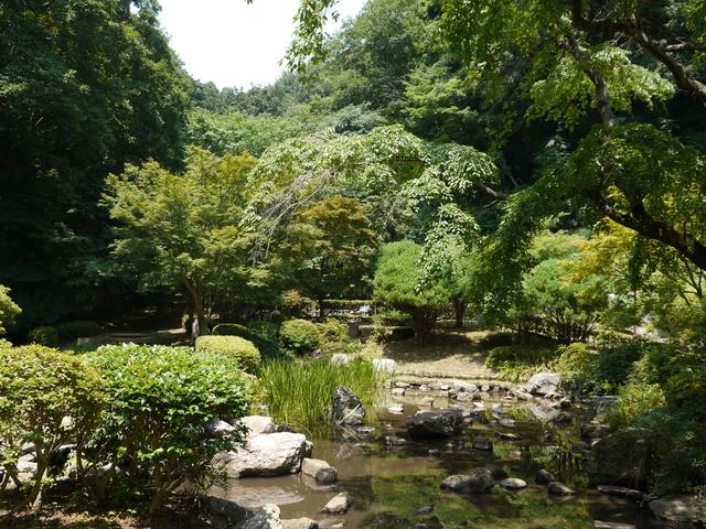 神奈川県 七沢森林公園