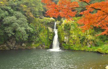 pixta 6168321 S 360x230 - 紫尾温泉が人気の3つの理由!旅館や観光情報から名物グルメ&お土産についても