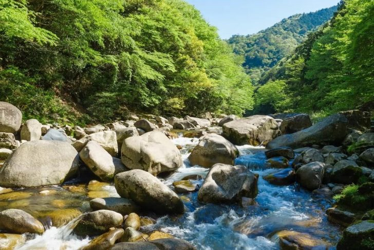 観光で岡山を元気に_鏡野町