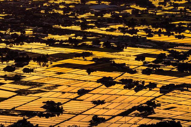 富山県 砺波平野 水鏡の水田