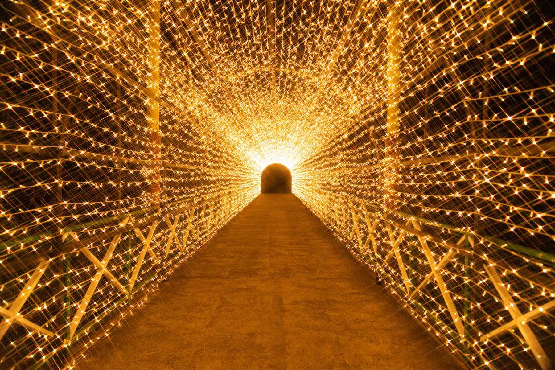 広島県_みろくの里_光のトンネル